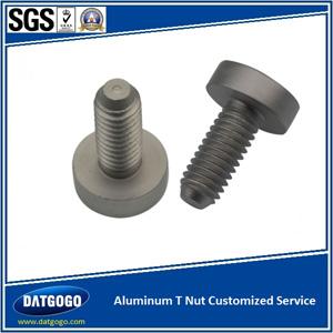 Aluminum T Nut Customized Service